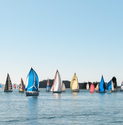 A group of colored sailing fleet in the Whitsundays during Hamilton Island Race Week