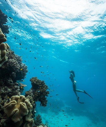 qualia woman observing fish and coral underwater in Great Barrier Reef with snorkel and flippers