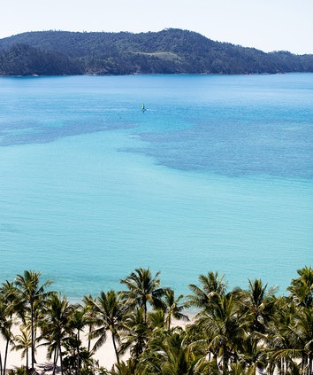 Catseye Beach with palm trees in foreground and turqouise Whitsunday waters dotted with watersports participants