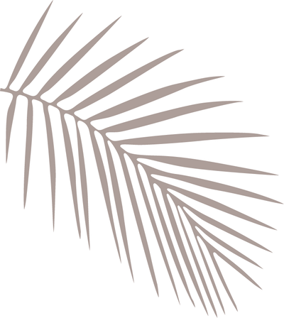 brown palm fronds facing towards the right against black background