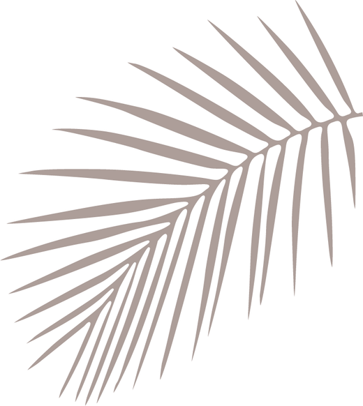 brown palm fronds facing towards the left against black background