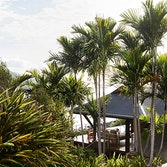 qualia resort view of a covered Beach House deck with sun lounges and Whitsundays views surrounded by palm trees