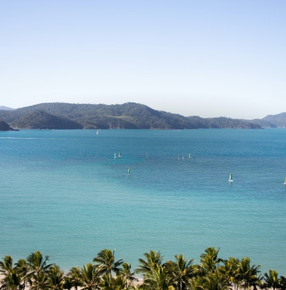 qualia resort aerial view of Catseye Beach lined with palm trees and hobie cats watersports dotted in the sea